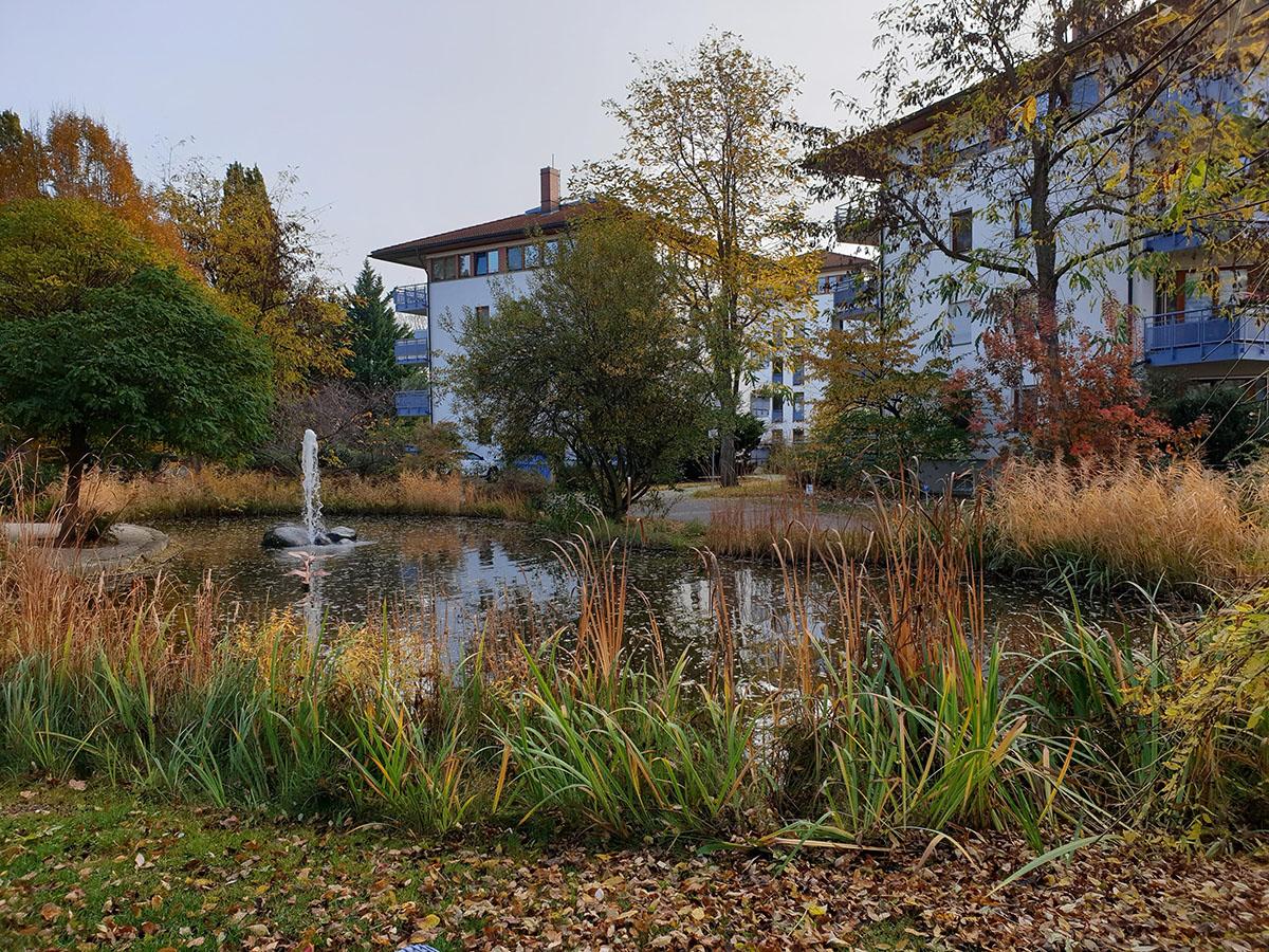 Bogumils Garten – Teichanlage